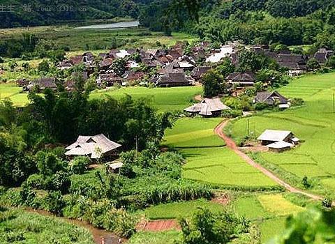 园林占地面积900公顷(13500亩),保留有大片原始森林,已引种栽培热带