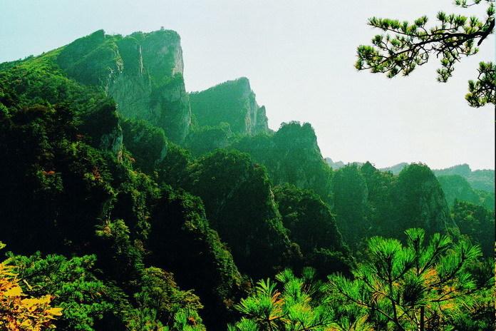 6%,是洛阳市第二大森林公园,该公园地处伏牛山主峰.