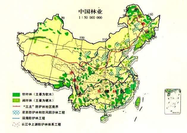 中国森林资源图片