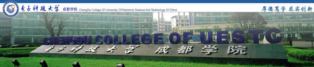 电子科技大学成都学院图形艺术系