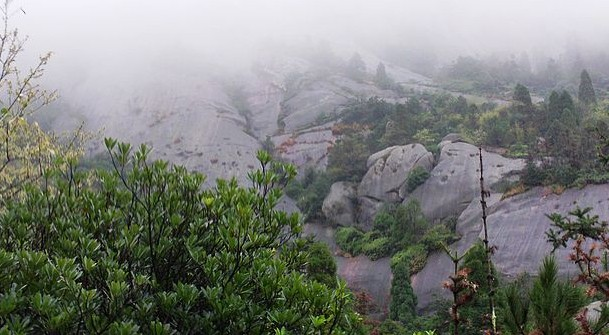 茶山风景区占据大罗山西北,隔三垟水网与温州主城区相望,是大罗山区