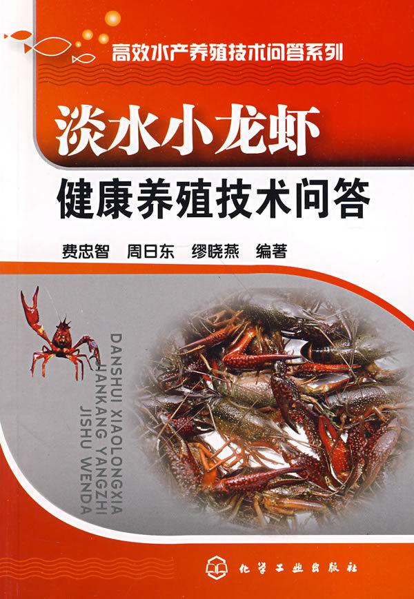 养殖小龙虾设计图展示
