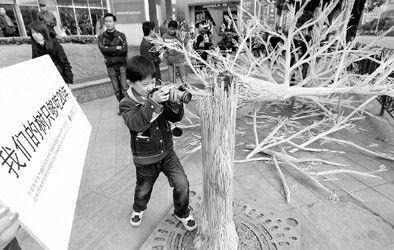 """一棵折断的""""筷子树""""2010年12月11号"""