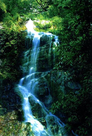 晓溪塔森林公园旅游示意图