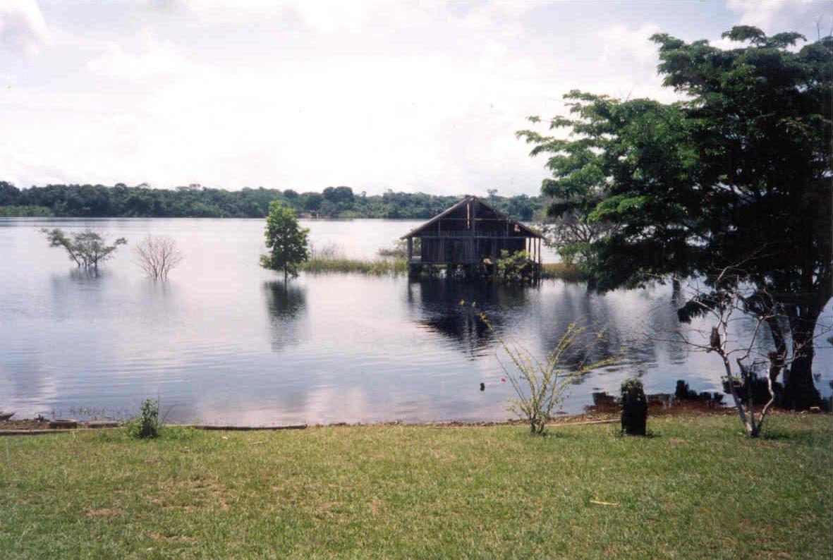 世界上最大的平原是南美洲的亚马逊河平原