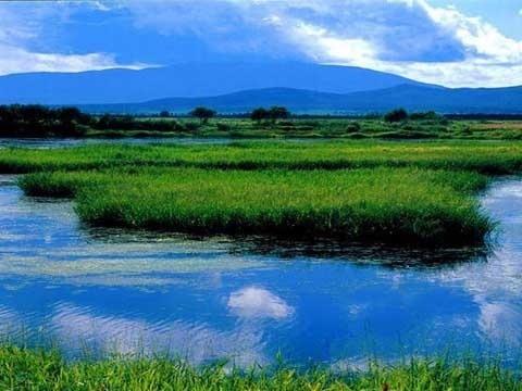 大洲岛自然保护区湿地96.西沙群岛湿地97.钦州湾湿地98.