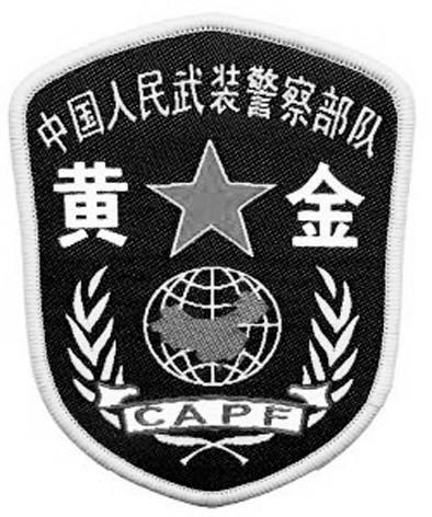 武警 标志矢量图